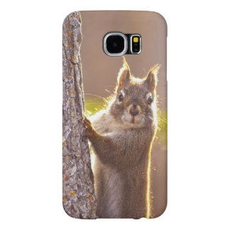 Young Squirrel in Sunlight on Tree Wildlife Photo Samsung Galaxy S6 Case