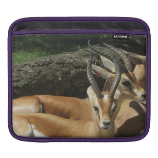 Young Stags iPad pad Horizontal Sleeve For iPads