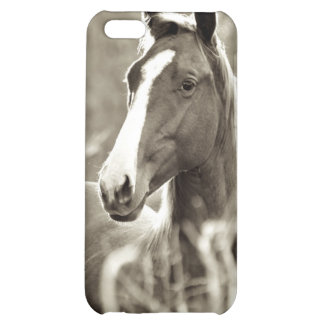 Young Stallion iPhone 5C Case