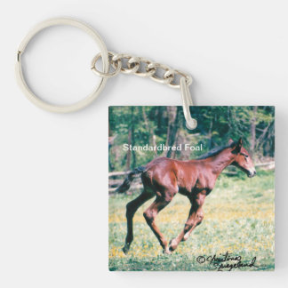 Young standardbred foal galloping Key Chain