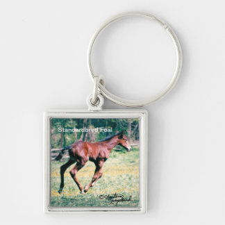 Young standardbred foal galloping Keychain