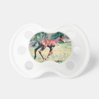 Young standardbred foal galloping Pacifier