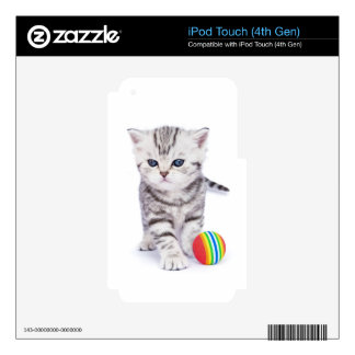 Young standing silver tabby cat with colorful ball decals for iPod touch 4G