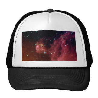 Young Stars Emerge from Orion's Head Trucker Hat