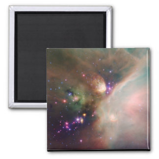 Young Stars Magnets