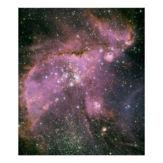 Young Stars Sculpt Gas with Powerful Outflows Poster