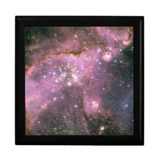 Young Stars with Pink Gift Box