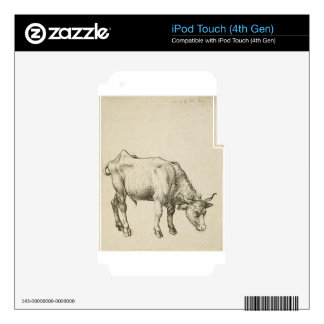 Young Steer by Albrecht Durer iPod Touch 4G Decals
