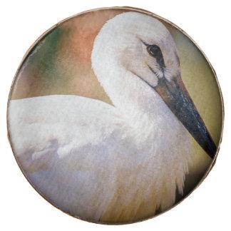 Young Stork Bird, Animal Portrait Photograph Chocolate Dipped Oreo