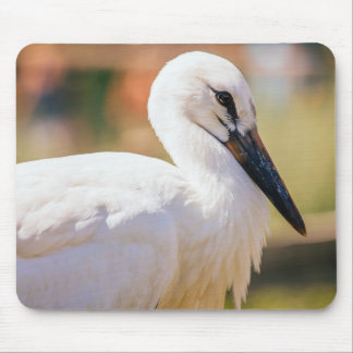 Young Stork Bird, Animal Portrait Photograph Mouse Pad