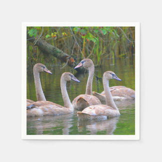 Young Swans Napkin