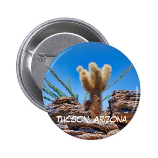 Young Teddy Bear Cholla Pinback Button
