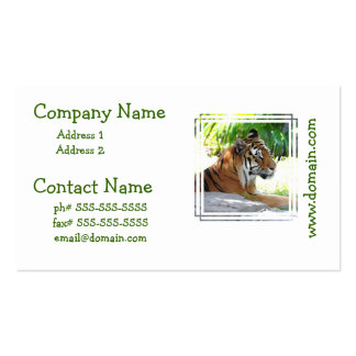 Young Tiger Business Cards