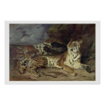 Young tiger playing with his mother, 1830 (oil on print