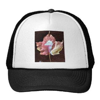 Young Tom Turkey Mesh Hats
