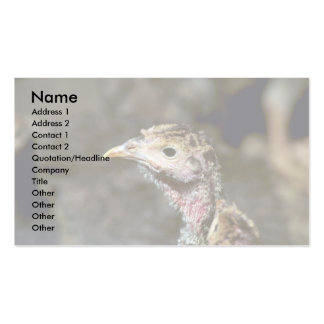 Young Turkey Business Card