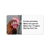 Young Welsummer Rooster Chicken Label
