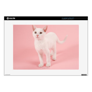 "Young white cat 2 15"" laptop skins"