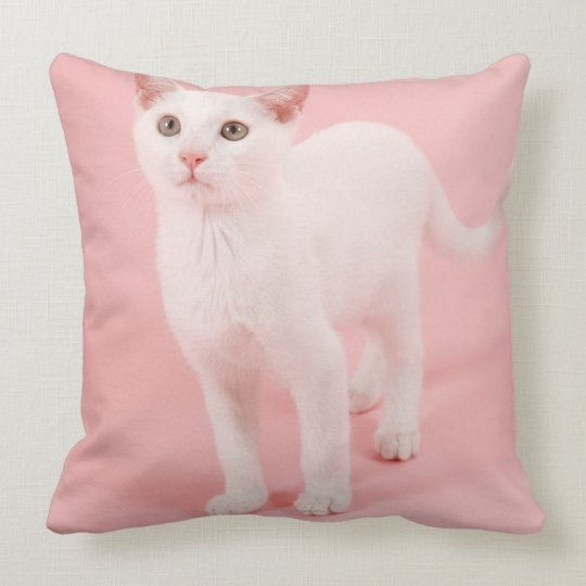 Young white cat 2 throw pillow