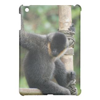 Young White Cheeked Capuchin Monkey iPad Case