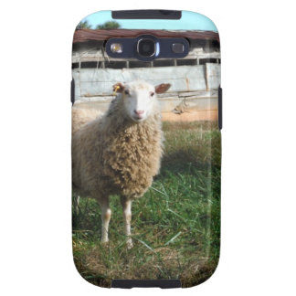 Young White Sheep on the Farm Samsung Galaxy SIII Cover