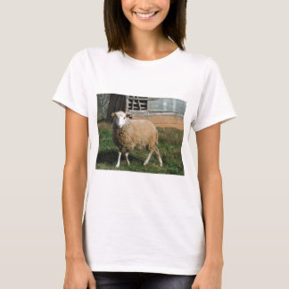 Young White Sheep on the Farm T-Shirt
