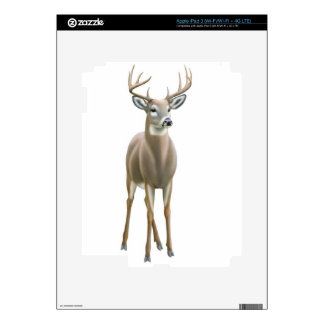 Young Whitetail Buck Deer Zazzle Skin Decal For iPad 3