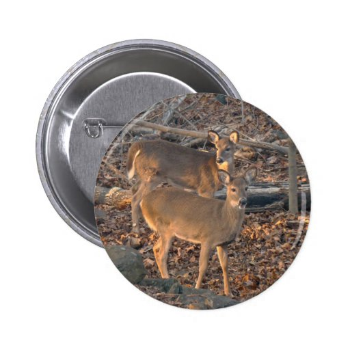 Young Whitetail Deer Series 2 Inch Round Button