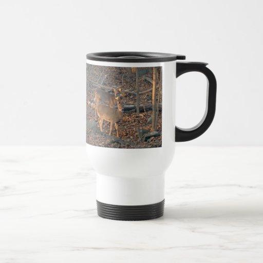 Young Whitetail Deer Series Travel Mug