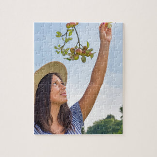 Young woman picking red apples from apple tree jigsaw puzzle