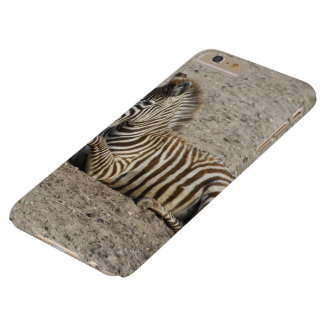 Young zebra 1215A Barely There iPhone 6 Plus Case