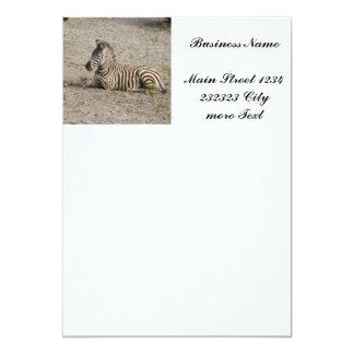 Young zebra 1215A Card