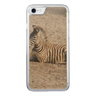 Young zebra 1215A Carved iPhone 7 Case