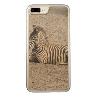 Young zebra 1215A Carved iPhone 7 Plus Case