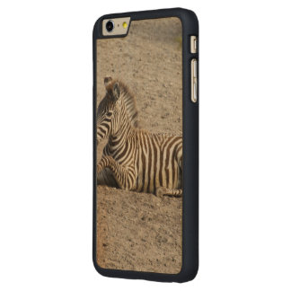 Young zebra 1215A Carved Maple iPhone 6 Plus Slim Case