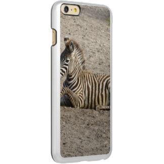 Young zebra 1215A Incipio Feather Shine iPhone 6 Plus Case