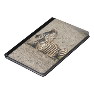 Young zebra 1215A iPad Air Case