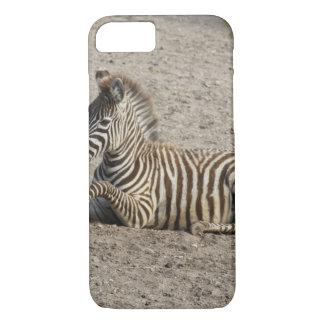 Young zebra 1215A iPhone 7 Case