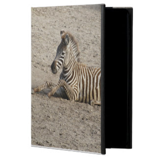 Young zebra 1215A Powis iPad Air 2 Case