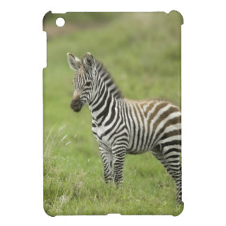 Young Zebra In The Serengeti Plain iPad Mini Cover