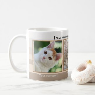 Your 3 Funny Cat Photos Beige Ivory Striped Mug