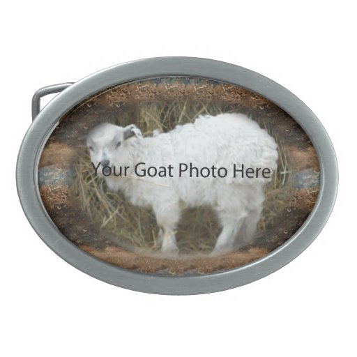 YOUR Abstract Stone Goat Photo Here  Belt Buckle