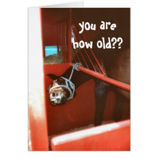 your are how old??? greeting cards