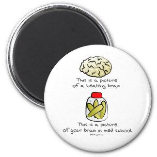 Your brain in Med School 2 Inch Round Magnet