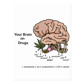Your Brain on Drugs 2 Postcard
