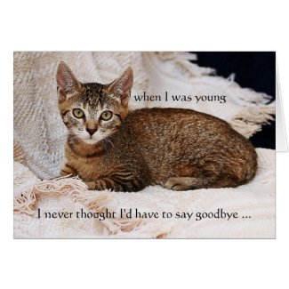 Your Cat Photo Sympathy Greeting Card