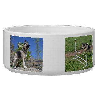 Your Custom Large Pet Bowl - German shepherd dog