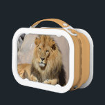 """Your Custom Orange yubo Lunch Box<br><div class=""""desc"""">Lion with a thick shaggy mane resting in the sun.</div>"""