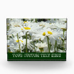 """Your Custom Text Here Wall Plaque Daisy Flowers<br><div class=""""desc"""">Your Custom Text Here Wall Plaque Daisy Flowers Awards Sign Plaque Excellence Award Daisies Flowers, Awards Plaques custom White DAISY FLOWERS, School Awards, Work Awards, Sports Awards, Mom Awards. Add Your Text, create your own award. Bookmark this site for great gift ideas all year! GETTING A GIFT? COMBINE several products....</div>"""