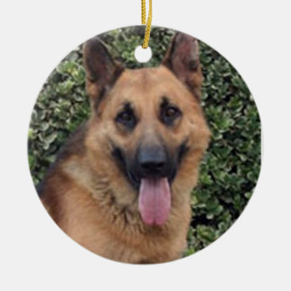 """""""Your Dog's Face"""" Ornament"""